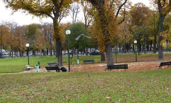 Petit Palais automne